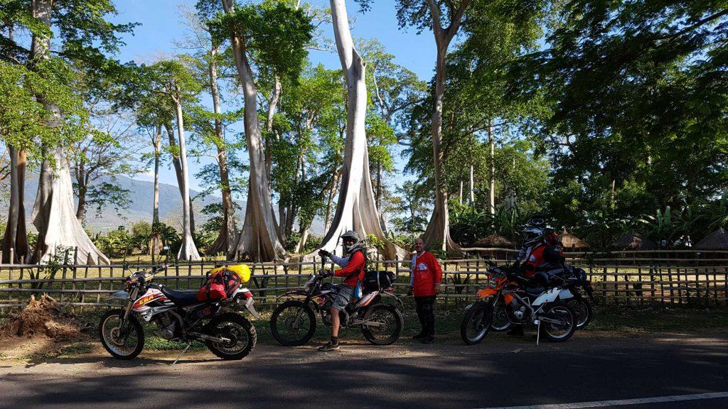 Lombok to Sumbawa