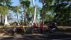 Big Tree Garden in Lombok