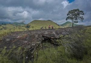 Java Volcano