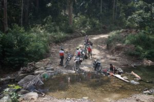 Motorcycle Forest Ride in Asia