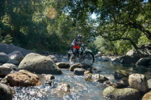 Crossing The Water in a small river in the Flores jungle