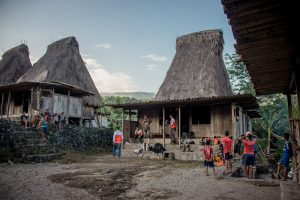 The traditional village of Gurusina on Flores Island