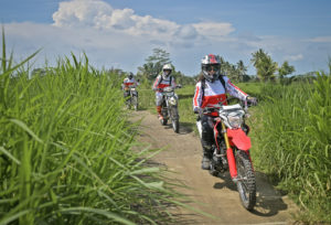 Ubud Dirt Bike Rides through the green rice fields