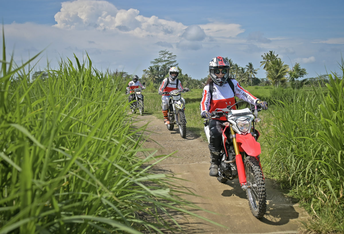 Ubud Dirt Bike Rides through the green rice fields