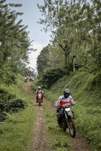 Trail Riding in Java